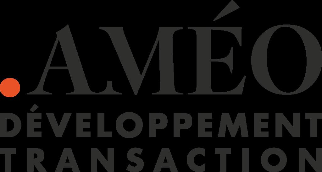 Améo développement transaction, recherche actifs fonciers, immobiliers, hôtel, retail